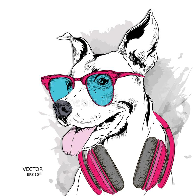 The poster of the dog portrait in hip-hop hat and with headphones. Vector illustration. The poster of the dog portrait in hip-hop hat and with headphones vector illustration