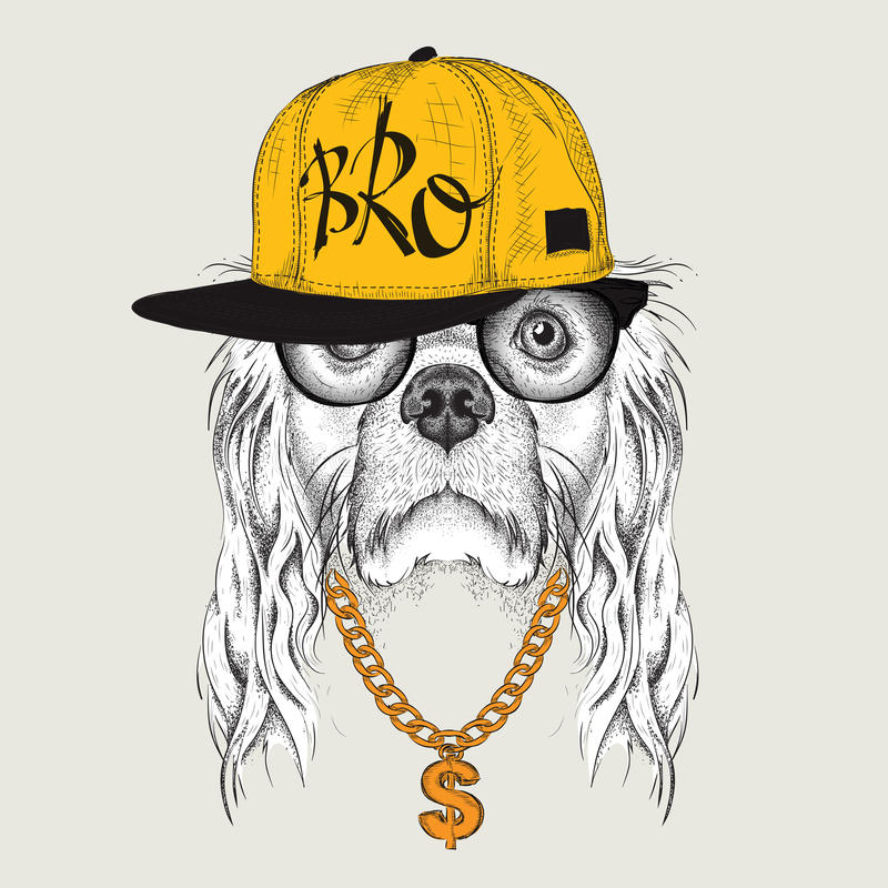 The poster with the image of Cocker Spaniel portrait in hip-hop hat. Vector illustration. The poster with the image of Cocker Spaniel portrait in hip-hop hat vector illustration