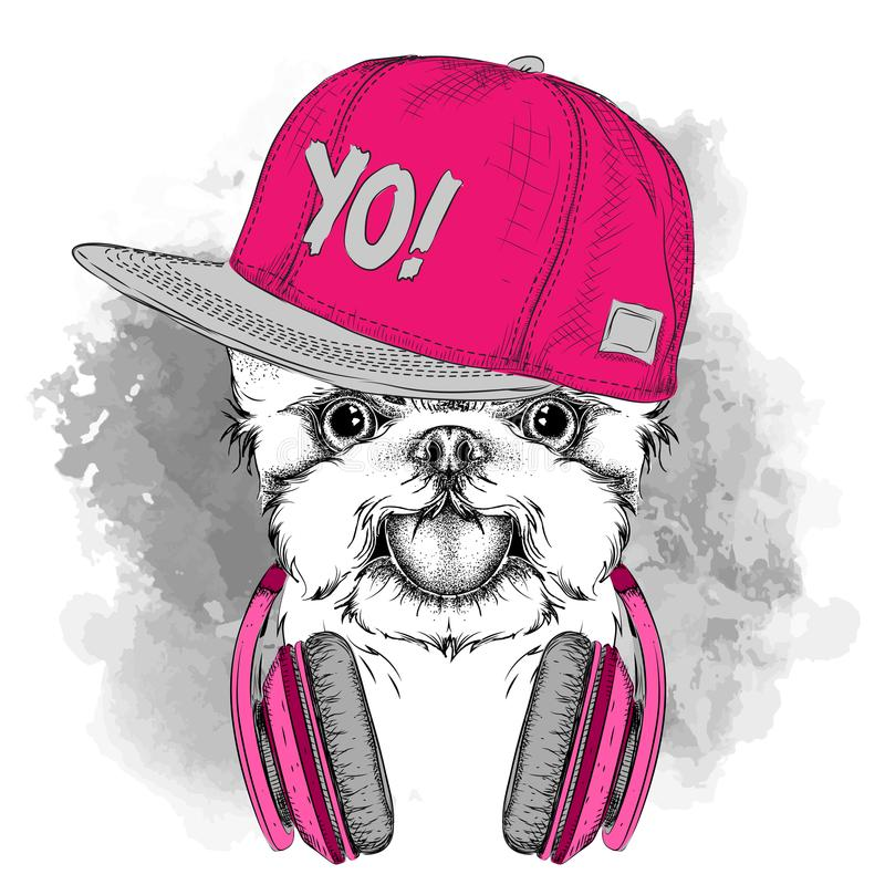 The poster with the image dog portrait in hip-hop hat adn with headphones. Vector illustration. stock illustration
