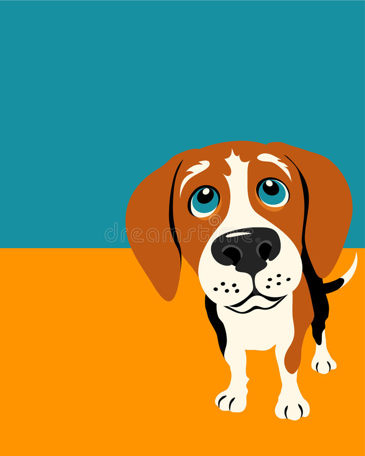 Poster layout with Beagle Dog. Poster layout with funny drawing of a curious beagle vector illustration