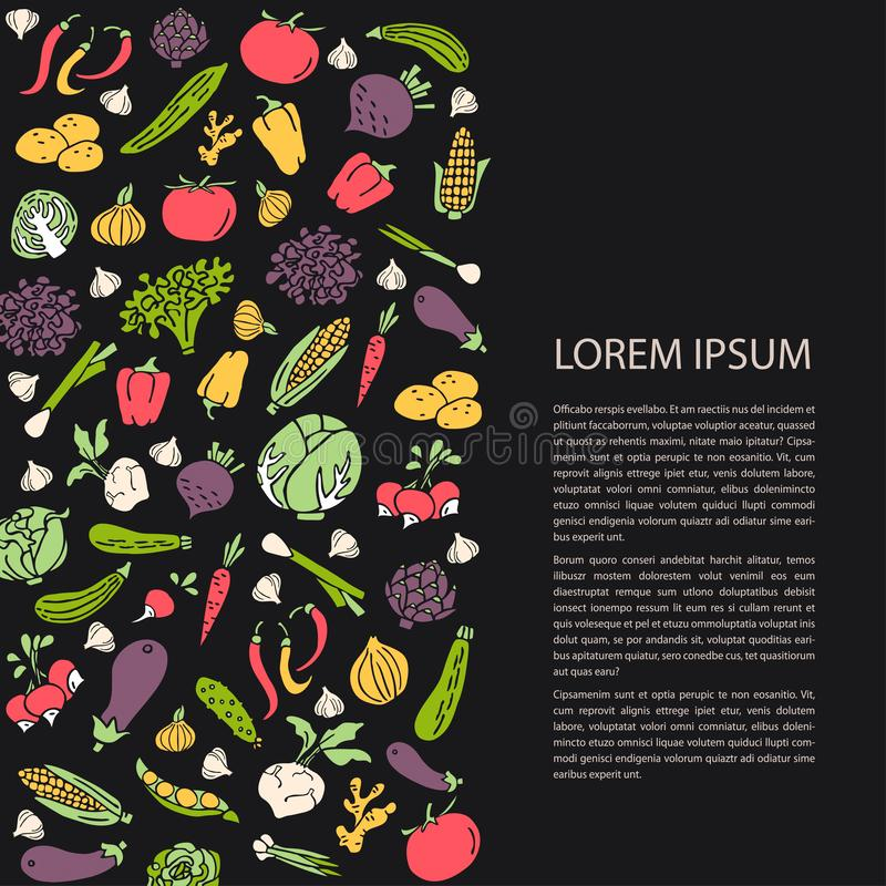 Poster template with hand drawn vegetables flat style vector royalty free illustration