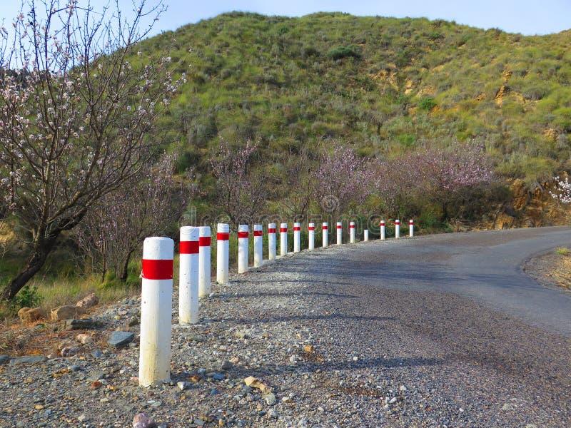 Postes de amarração brancos e vermelhos da estrada fotografia de stock royalty free