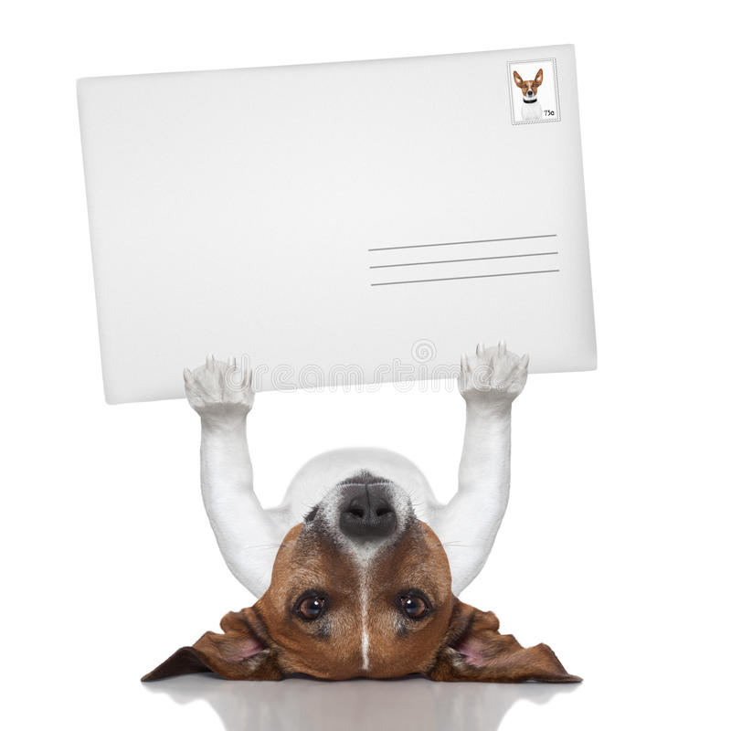 Posthund lizenzfreies stockbild