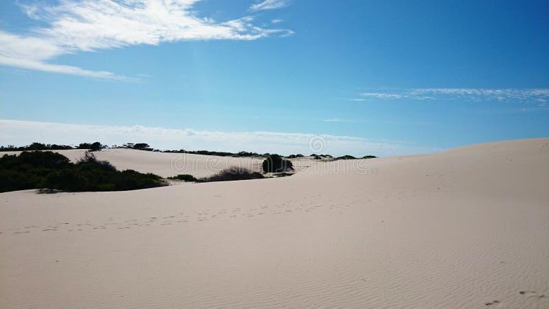 Posto aborigeno del punto scuro del deserto @ immagine stock libera da diritti