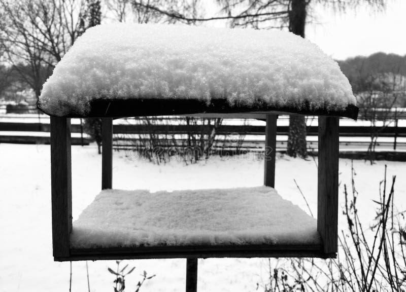 Posto di cibo per gli uccelli sotto neve all'inverno immagine stock libera da diritti