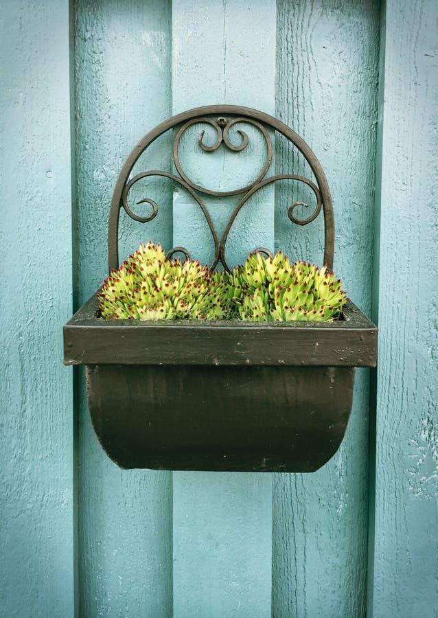 Posto per le piante fotografia stock