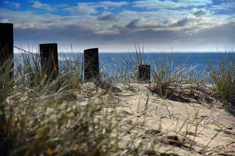 Posts on a beach stock photo