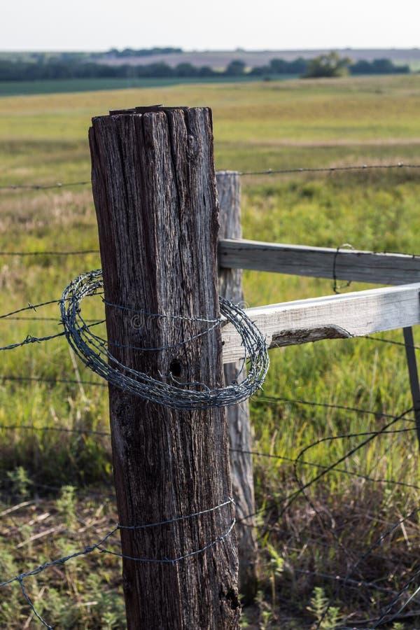 Posts de la cerca en la pradera imagen de archivo libre de regalías