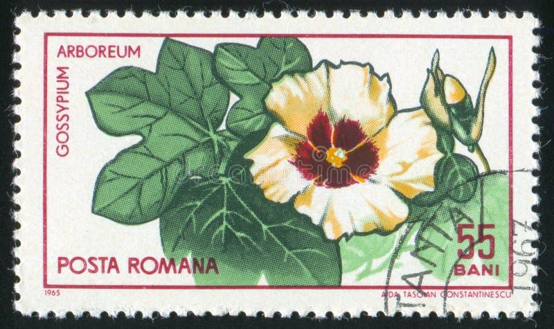 Poststamp fotografia de stock royalty free