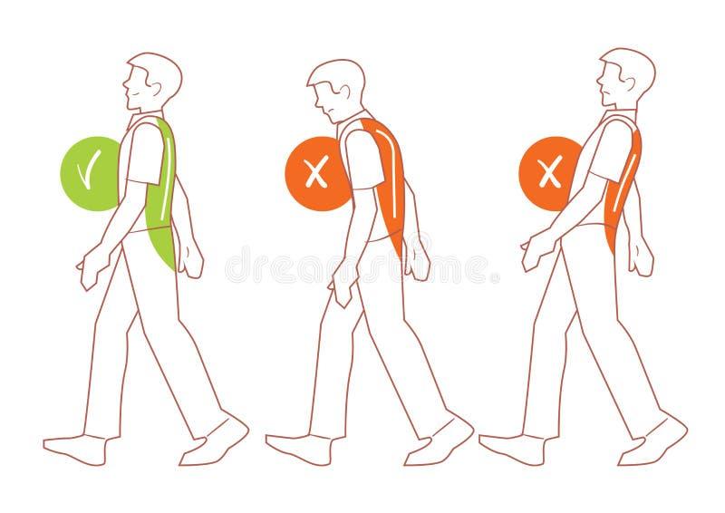 Postura correcta de la espina dorsal, mala posición que camina stock de ilustración
