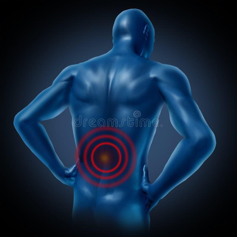 Postura humana de la espina dorsal del dolor de espalda libre illustration