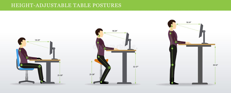 Posturas correctas para la altura ajustable y los escritorios derechos stock de ilustración