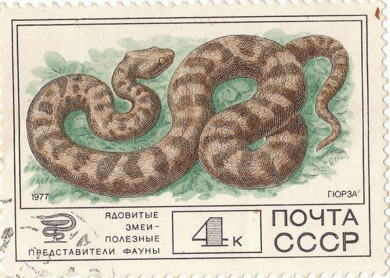 Postzegel` Adder ` royalty-vrije stock foto's