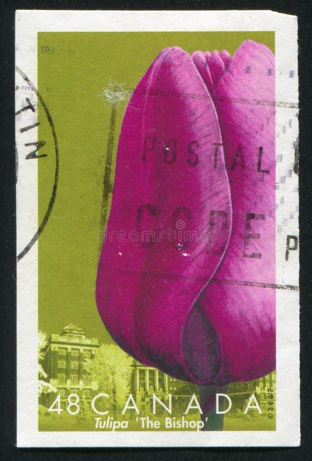 Postzegel vector illustratie