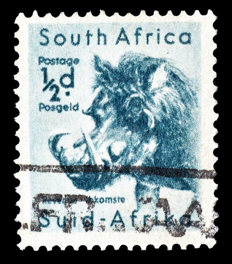 Postzegel door Zuid-Afrika wordt gedrukt dat royalty-vrije stock afbeelding