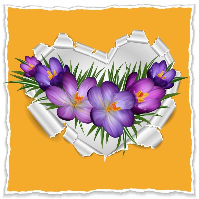 Poszarpany papierowy serce z purpurowymi krokusami royalty ilustracja