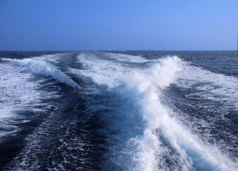 potężny surf czuwanie obraz royalty free