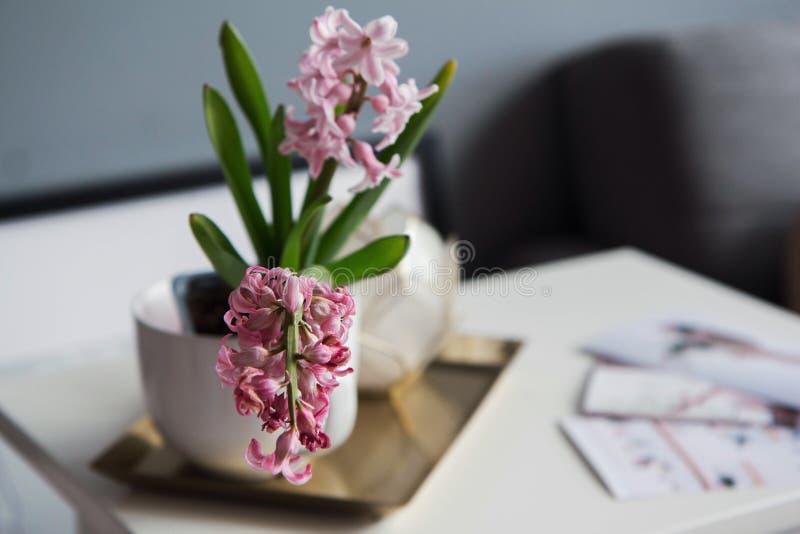 Pot avec une fleur images stock