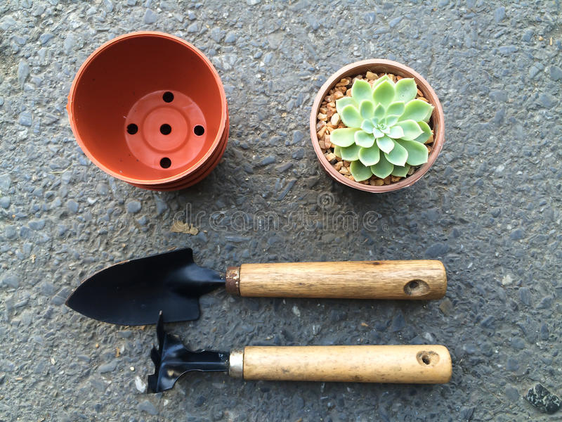 A pot of cactus and gardening tools stock photography