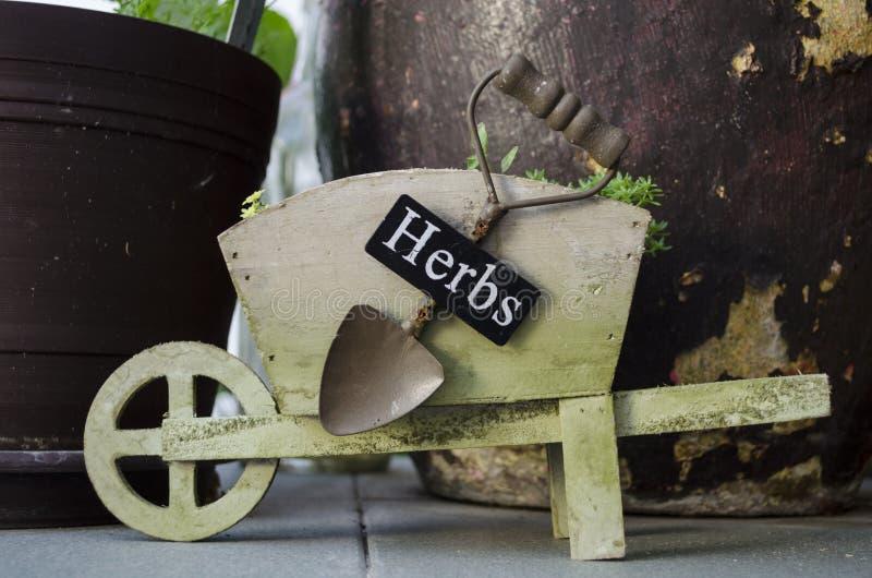 Pot de brouette au jardin photos stock