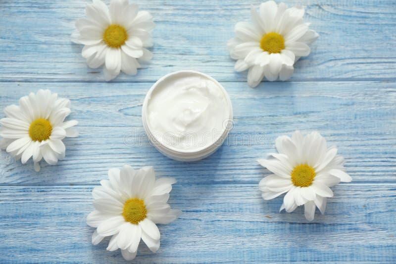 Pot de crème avec les fleurs de fines herbes d'extrait et de marguerite sur le fond en bois blanc photo stock