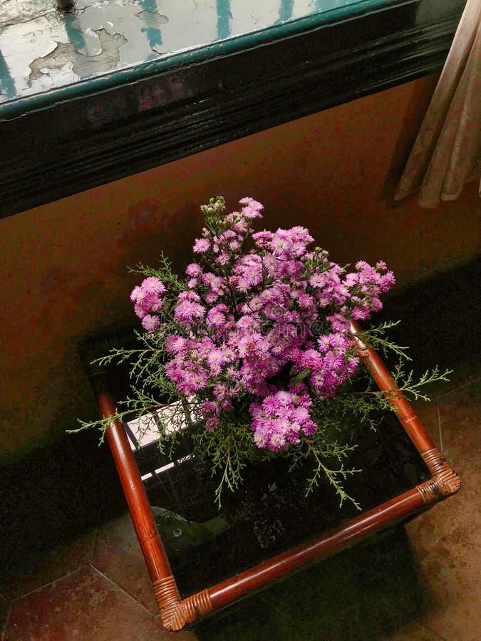 Pot de fleur images stock