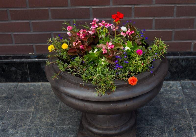 Download Pot de fleur de rue photo stock. Image du herbe, étage - 56486588