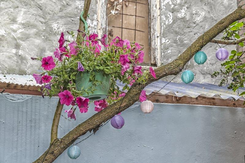 Pot de fleur rempli de fleurs image stock
