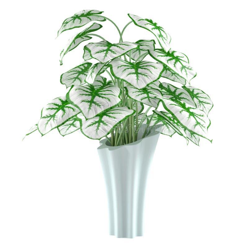 Pot de fleurs d'isolement illustration de vecteur