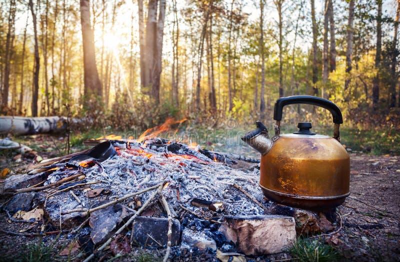 Pot de touristes fumeux de thé sur le feu dans la forêt de matin image stock