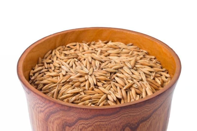 POT di legno con i semi dell'avena immagine stock