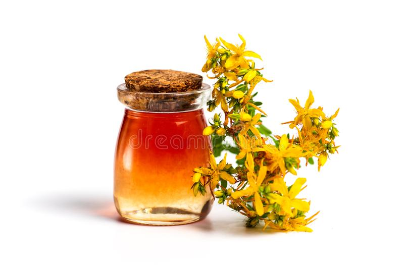 Pot marigold oil and flowers isolated stock photos
