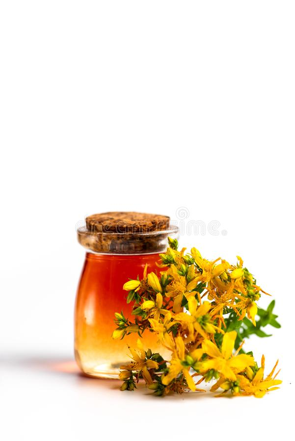 Pot marigold oil and flowers isolated. Calendula Pot marigold herbal essential oil and flowers isolated on white, bouquet, tincture, background, plant, product royalty free stock photos