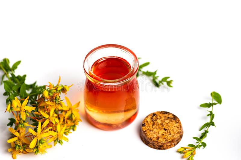 Pot marigold oil and flowers isolated. Calendula Pot marigold herbal essential oil and flowers isolated on white, bouquet, tincture, background, plant, product royalty free stock images