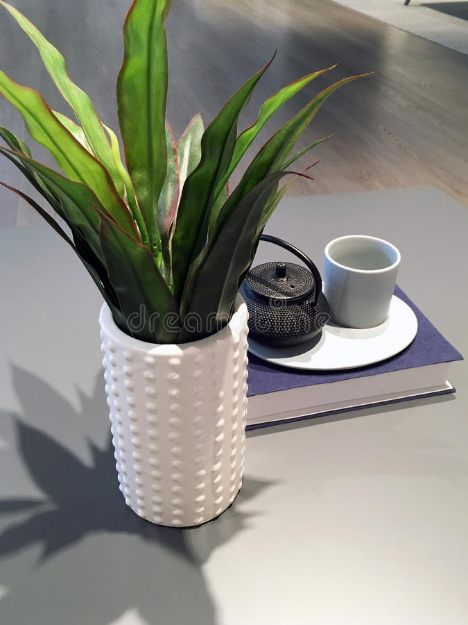 Pot Plant on Coffee Table royalty free stock image
