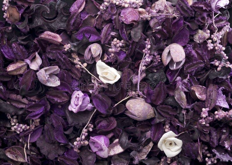 Pot-pourri. Background of purple and white pot-pourri stock photo
