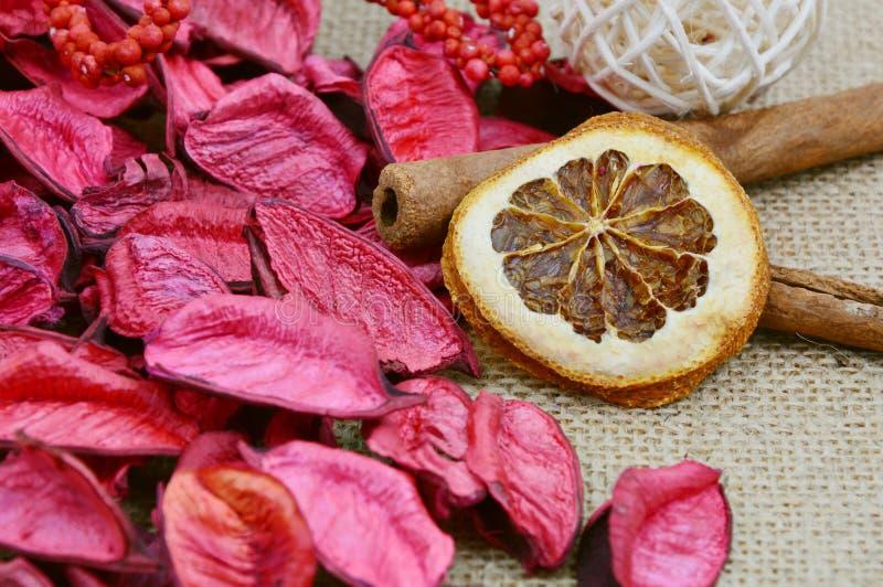 Pot-pourri orange et rouge sec photographie stock libre de droits