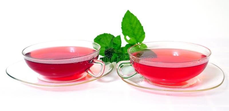 POT rosso del tè fotografia stock