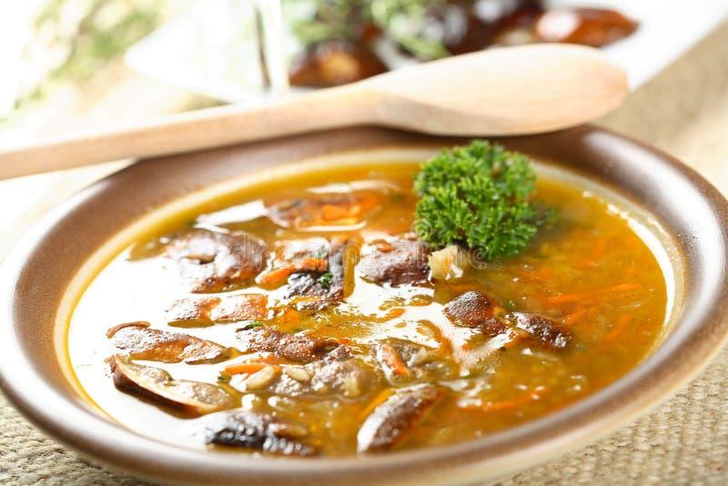 Download Potage Aux Légumes Avec Des Champignons De Couche Photo stock - Image du poivre, bronze: 2139600