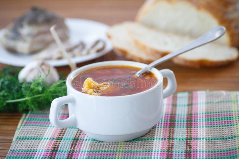 Potage aux légumes avec le chou-fleur et les betteraves images stock