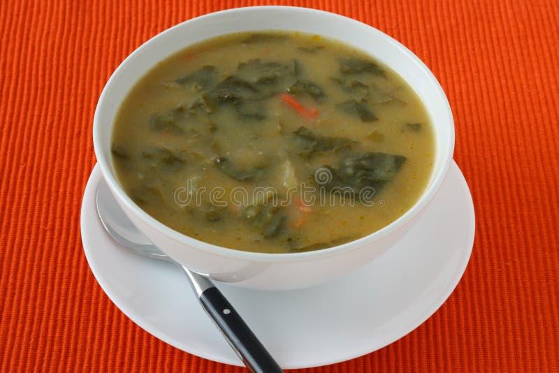 Potage aux légumes dans une cuvette blanche photo libre de droits