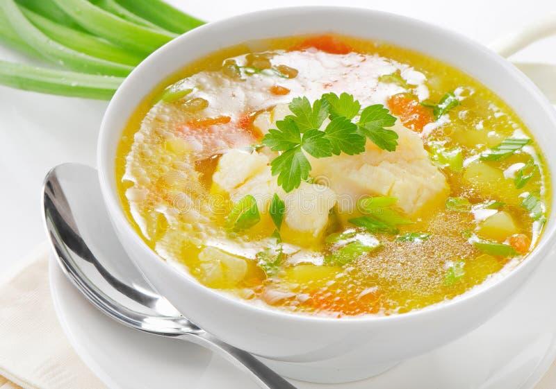 Soupe à poissons images libres de droits
