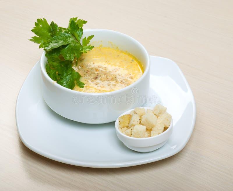 Potage crème d'oignon photos stock