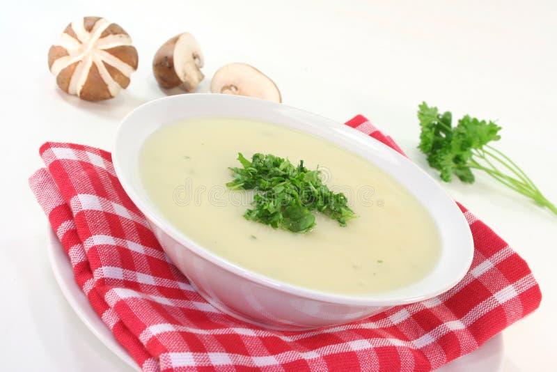 Potage crème de champignon de couche image stock