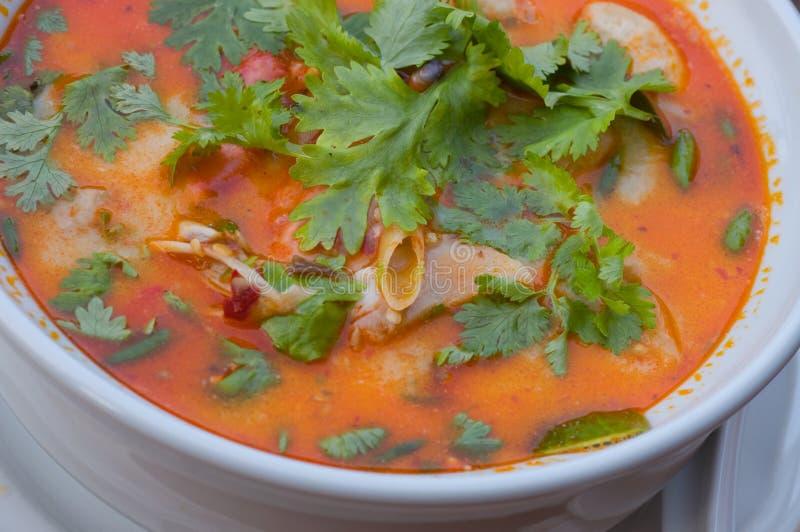Potage de crevette, nourriture thaïe image stock