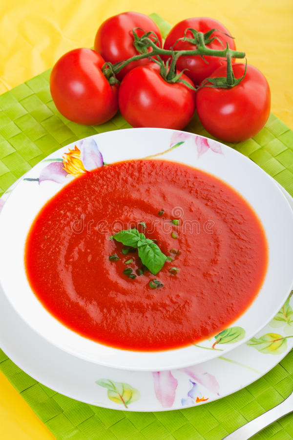 Potage frais de tomate photos libres de droits