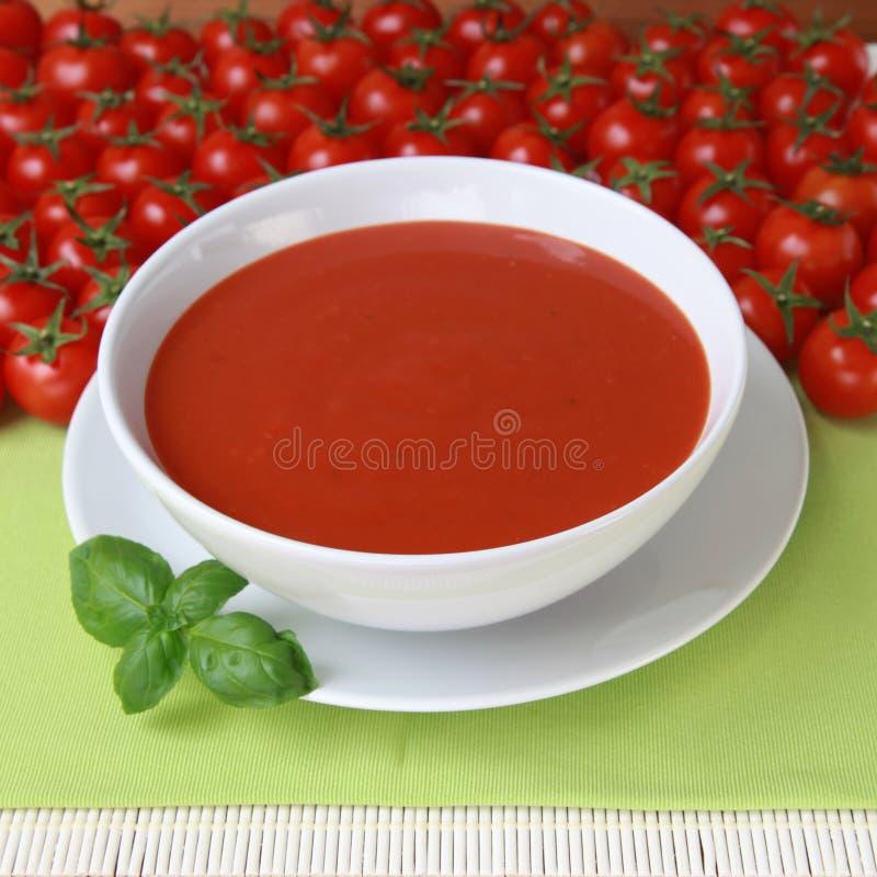 Potage frais de tomate images libres de droits