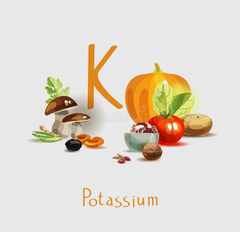Potassium in food. Natural organic products with a high content of potassium. Healthy nutrition as the basis of a healthy lifestyle royalty free illustration