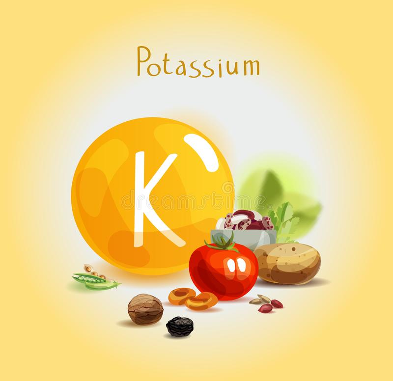 Potassium in food. Natural organic products with a high content of potassium. Healthy nutrition as the basis of a healthy lifestyle vector illustration