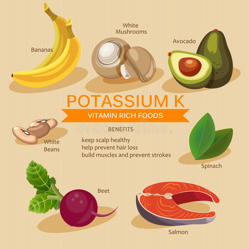 Potassium foods. Vitamins and Minerals foods Illustrator. Vector set of vitamin rich foods. royalty free illustration